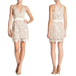 DRESS THE POPULATION 'AVA' LACE MINI Dress